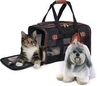 pet-travel2