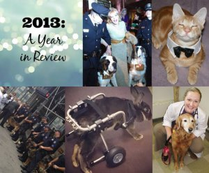 year-in-review-revised