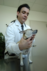 AMC's dermatologist, Dr. Mark Macina, examines a patient